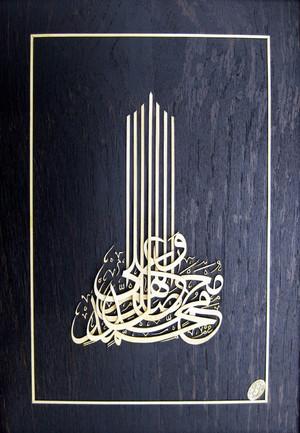 Salavat  محمدرضا امینی