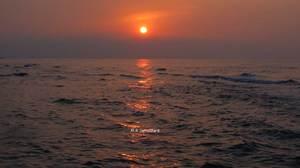 Sunny Sea  mohammad reza Jamalifard
