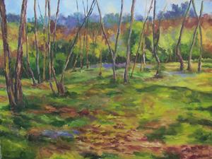 landskape 22  M Heidarinejad