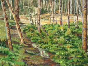 landskape 21  M Heidarinejad
