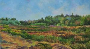 landskape 3  M Heidarinejad