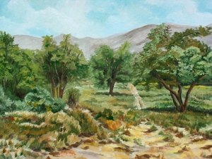 landskape  M Heidarinejad