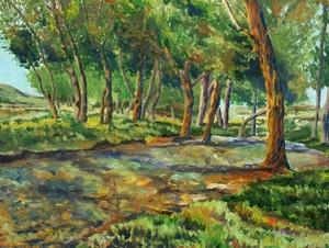 landskape 16  M Heidarinejad