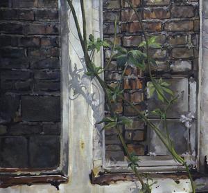 window  Niloofar Aghajari