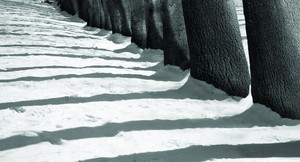 From the Snow White series  abbas kiarostami