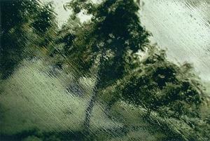 Untitled  abbas kiarostami