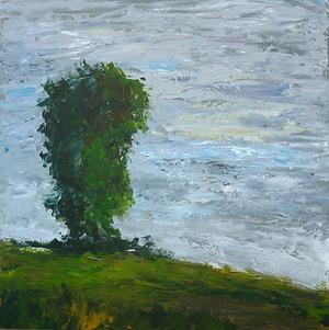 درخت از رضا عمادی