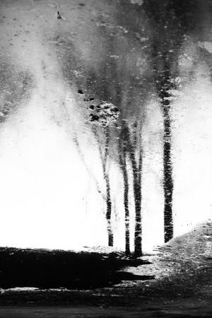 Reflection  Ehsan babaee