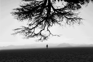 تنهایی از پیام داوود آبادی