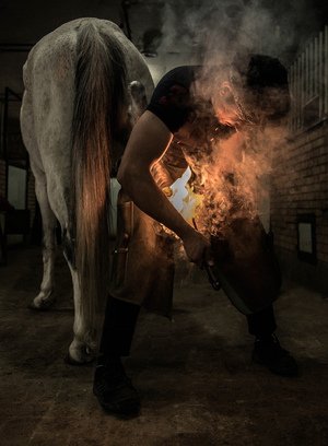 Blacksmith  shoresh mobasheri