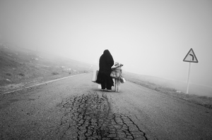untitled - 6  Hadi Asgari