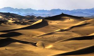 Desert Jara1  Mohammadhossein Dehghanian