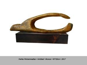 Untitled   Fariba Mohammadian