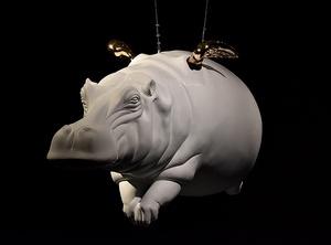 Hippo4  mohsen gholami