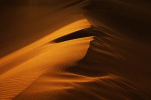 Desert  Ayla Hashemi