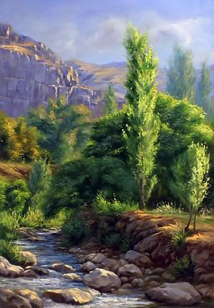 Kiwi nature 1  amrollah mohammadi