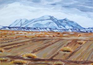 desert  katayoun tehrani