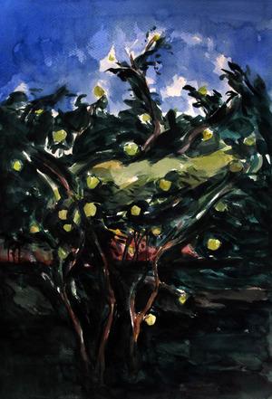 An apple tree  ghader Mansoori