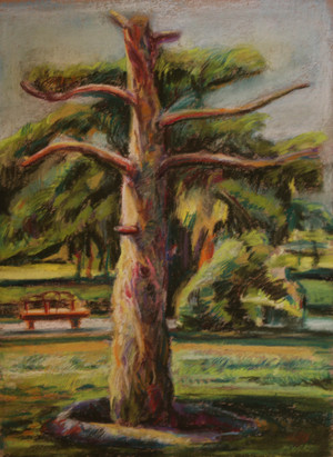 A landscape in Lale Park  ghader Mansoori