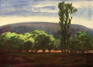 A landscape of