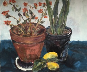 flower pots and lemons   Sara Khaligh