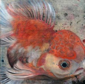 gold fish  mehrnaz ghafourian