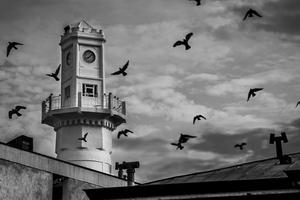 minaret  Arash RostamZad asli