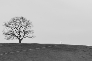 alone  Arash RostamZad asli