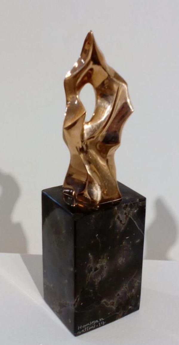 Works Of Art  Hooman Salimi
