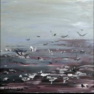 Seagulls 2  Saeid Emdadian