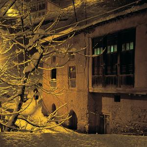 Masoulele, tree, snow  Saeid  Mahmoudi Aznaveh