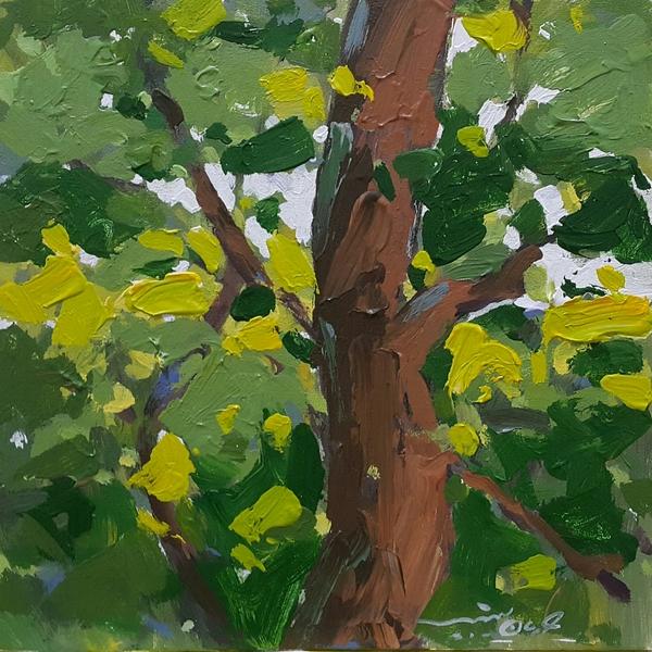 Works Of Art Arman Yaghoubpour