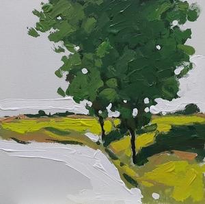 Nature30*3030 ,  Arman Yaghoubpour