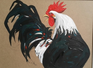 Rooster  Arman Yaghoubpour