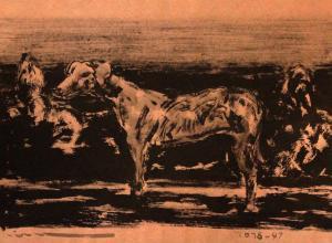 سگ  ghader Mansoori