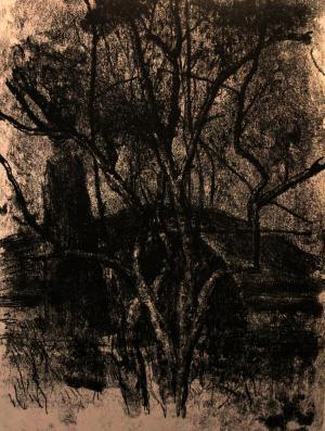 "A Landscape in ""Atal"" 3  ghader Mansoori"