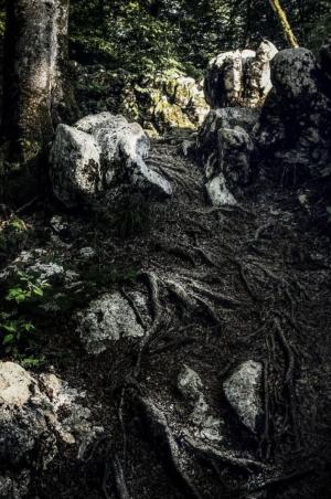 صخره یک از زمرد انیسی