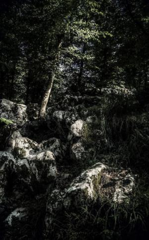 صخره از زمرد انیسی