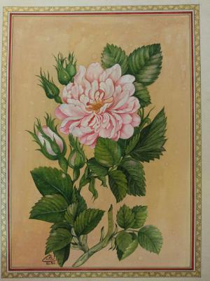 FLOWER  samane Amoonabi