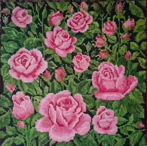 Rose garden  Parvin  Fattahizadeh