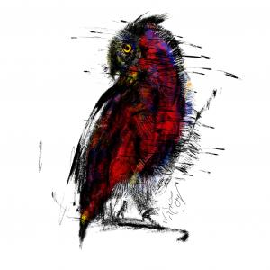 Owl Land 10  Soheil Hosseini