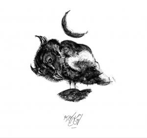 Owl Land 02  Soheil Hosseini