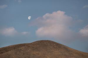 The moon  neda tayar