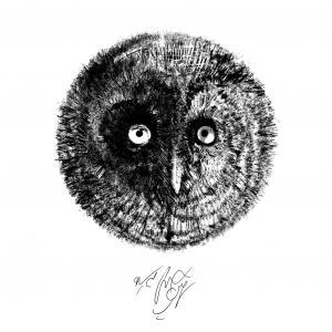 Owl Land 08  Soheil Hosseini