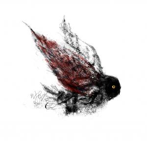 owl Land 04  Soheil Hosseini