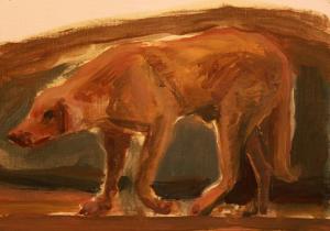 Dog 3  ghader Mansoori
