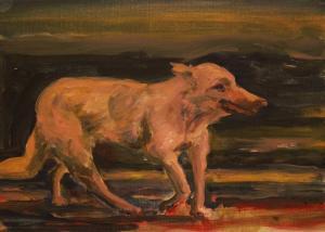 Dog 1  ghader Mansoori