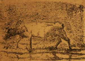 The cow 1  ghader Mansoori