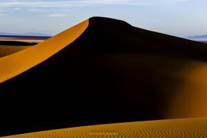 desert 1  shoresh mobasheri