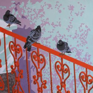 Rock doves  katayoun tehrani